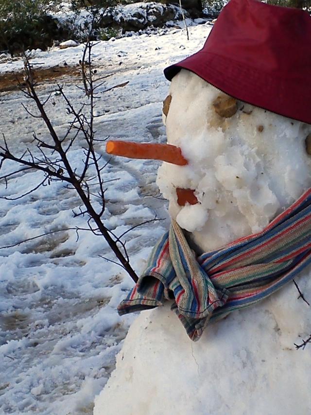 CoCo division, muñeco nieve